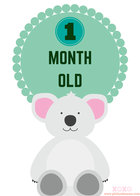super cute and free printable animal themed baby monthly milestone