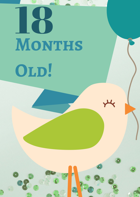 ">>Download the Printable PDF file of the ""18 Months Old"" sign here<<"