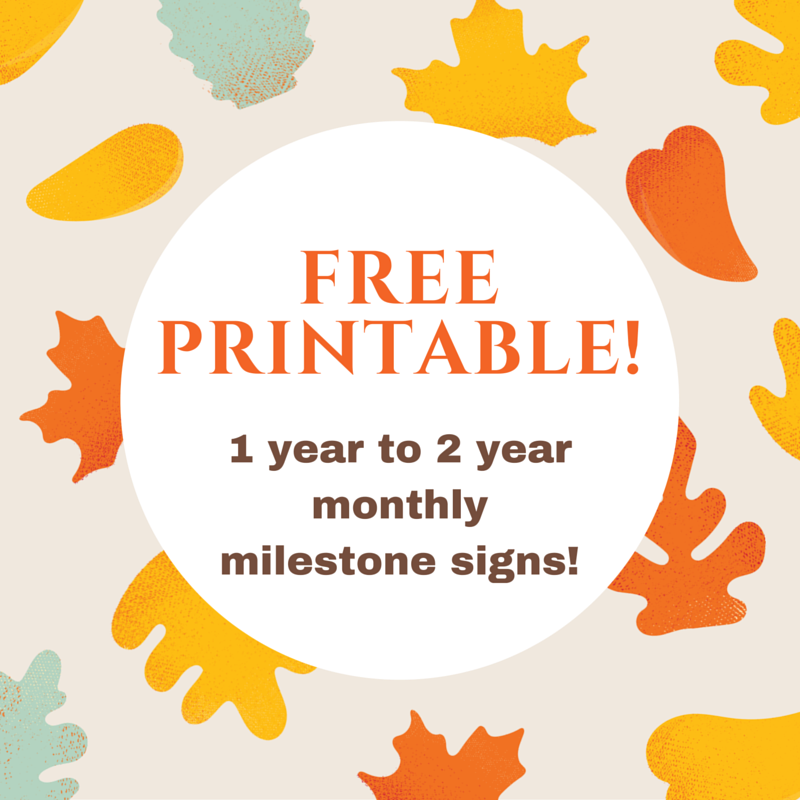 Baby's First to Second Year Series: Free Printable Baby Milestone Signs for  Photos (months 12 to 24), 1 to 2 years old! — Phil and Mama