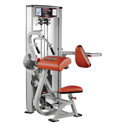 P-3100_Tricep_Extension.png