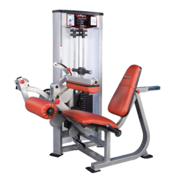 P-5300_Seated_Leg_Curl.png