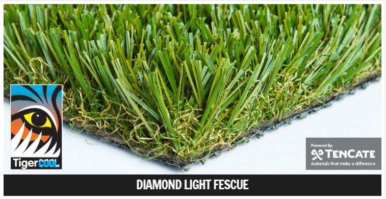 Diamond Light Fescue.png
