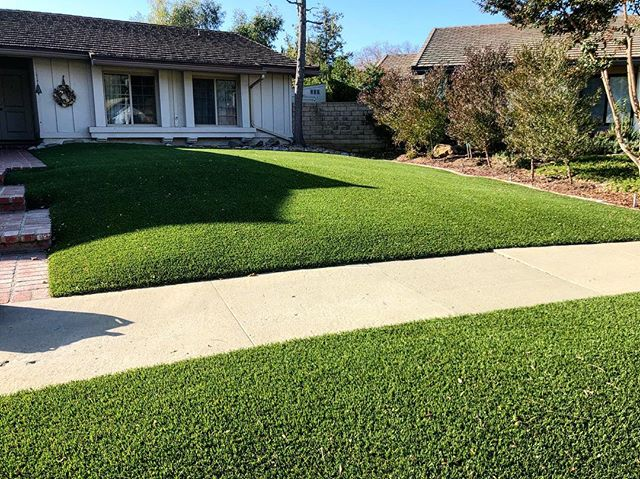 Stopped by one of our installs from 5 years ago! No wrinkles, no fading, only PERFECTION.  #ecograssus #turf #losangeles #savetheplanet #savewater #socal #artificialgrass #california #drought #californiadrought #savetheenvironment #syntheticgrass #yard #hardscaping #modernhome #kids #dogs #water #gogreen #green #savemoney #notosod #waterbill #eco  #landscapephotography #la #losangeles #oakpark
