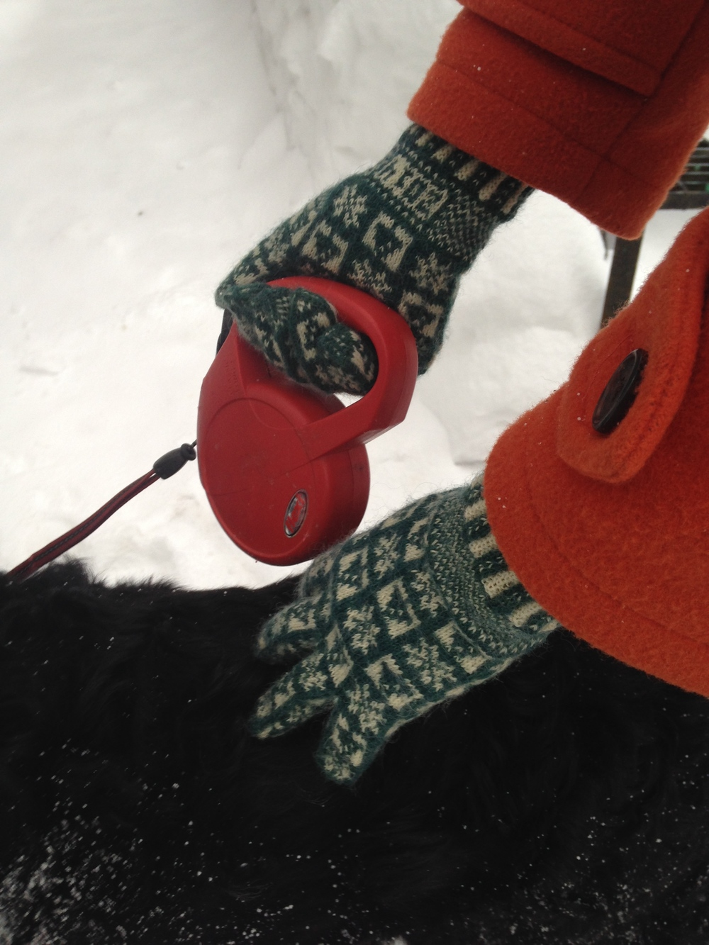My pair of Beth Brown Reinsel's Winter: A Sanquhar Glove Pattern