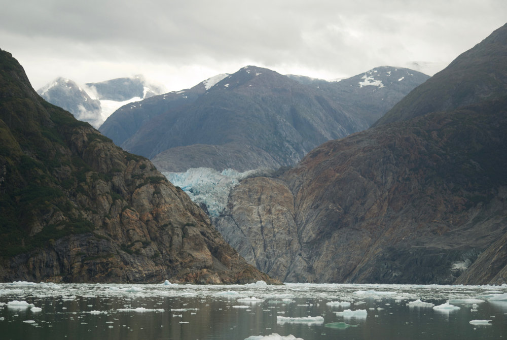 South Sawyer Glacier (just around the bend) Tracy Arm