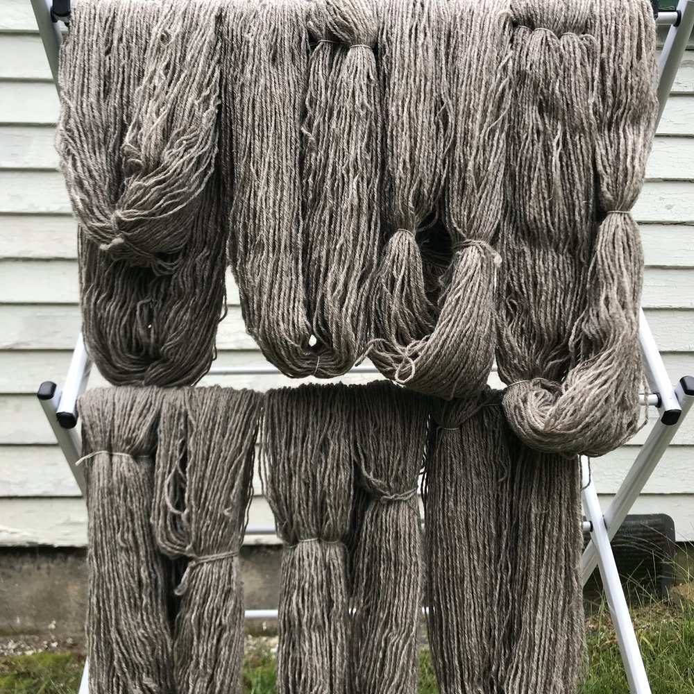 Gansey yarn drying.jpg