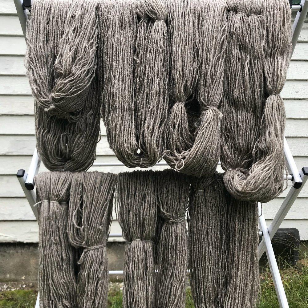 Gansey yarn drying.jpg