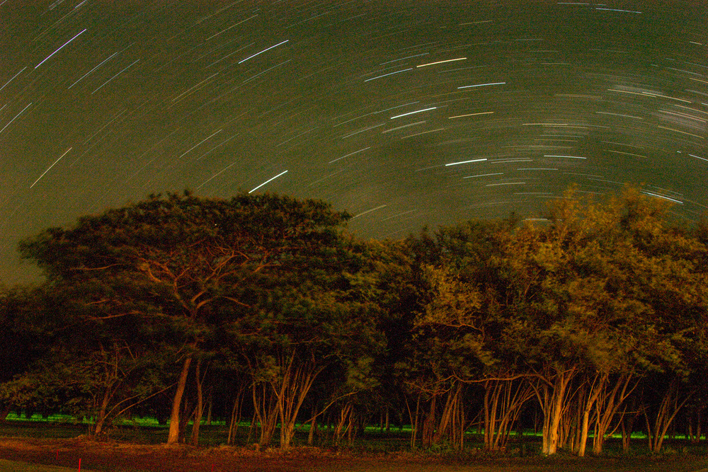 A little preview of the stars more to come. The green light below the trees are lightning bugs.