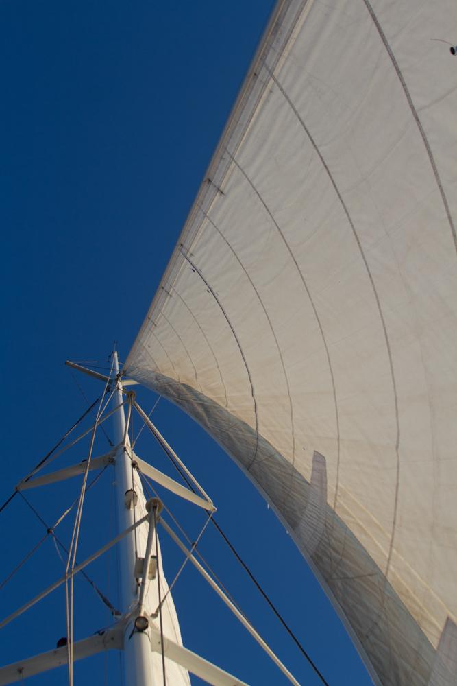 The catamaran cruise on the sea.
