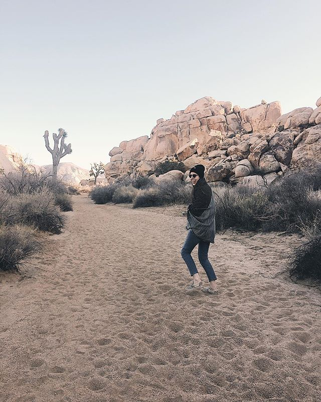 #tbt to adventures at Joshua Tree. 🌵 I'm taking a trip to the desert in the next few weeks. It'll be my first vacation in almost a year, so it's safe to say I'm REALLY excited. Plus, I definitely won't need two jackets, a scarf, and a hat to stay warm this time. Get at me, sunshine! . . . . . #everydaymadewell #ocblogger #desertdaze #desertdreams #joshuatreenationalpark #jtree