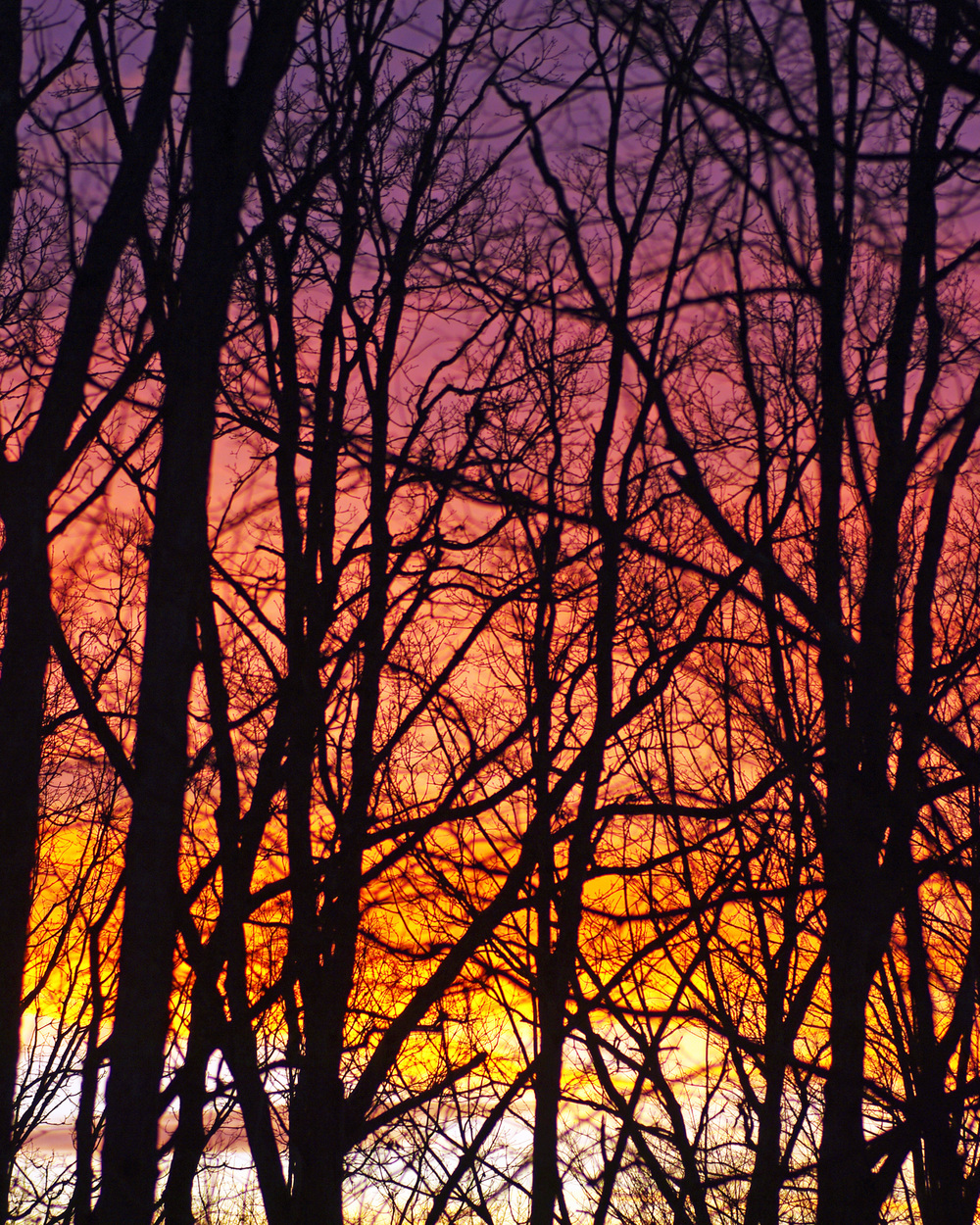 batik sunset 4.jpg