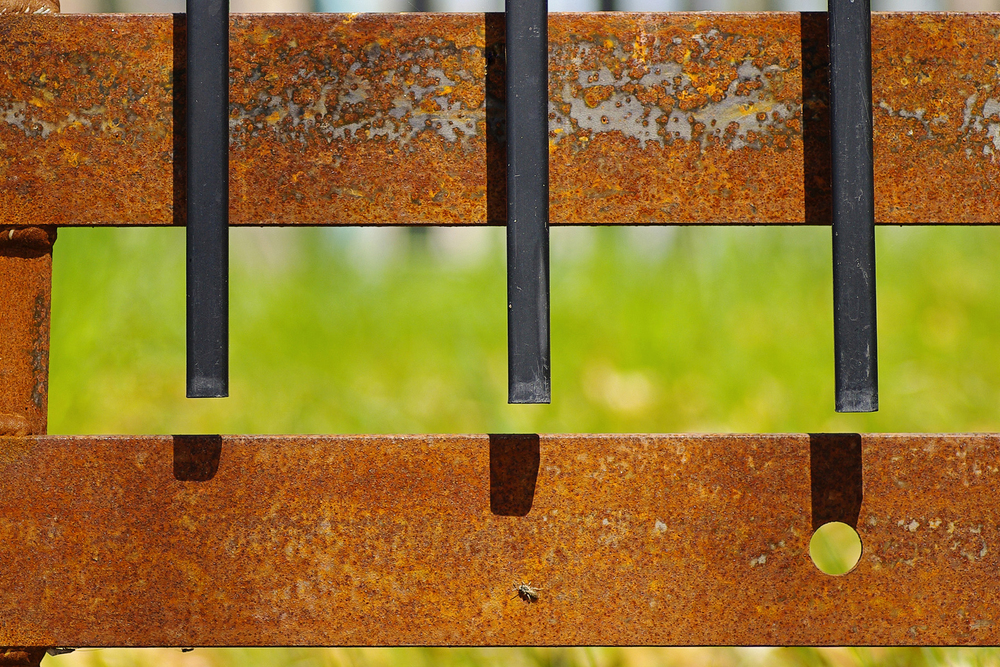 (6)rust fence brighter.jpg
