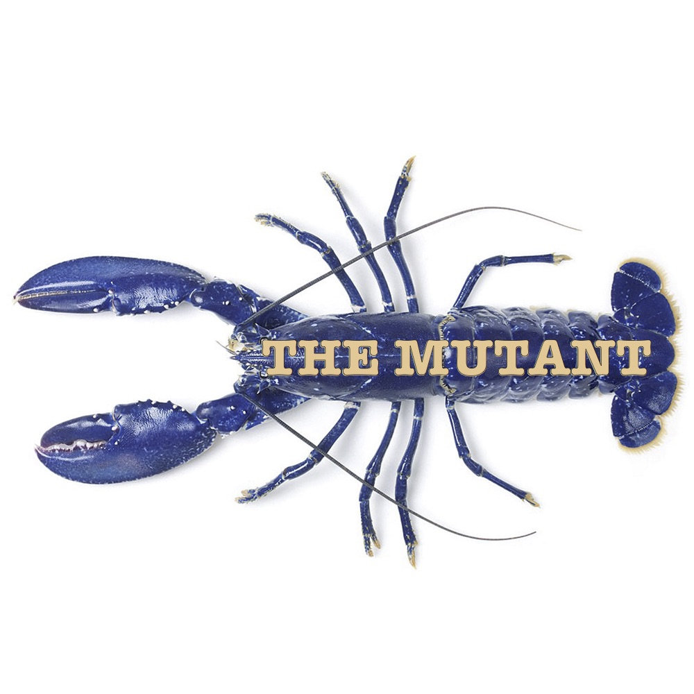 The Mutant - Listen to a collection of instrumental music by Peter Toutant released under The Mutant.