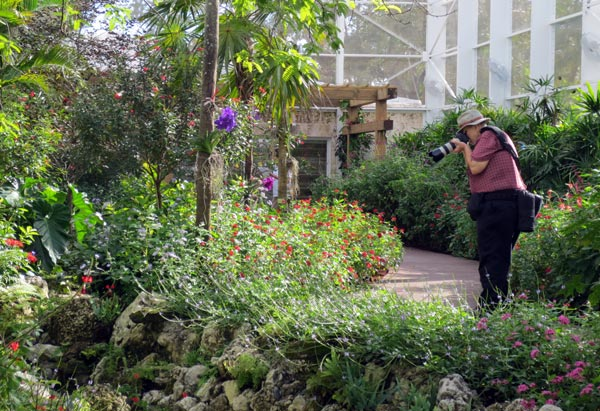 The Butterfly Conservatory Is Just One Part Of The Brand New $6 Million  Paul And Swanee DiMare Science Village. With Four Cutting Edge Educational  Labs, ...