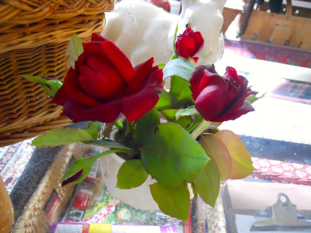 SMALL ROSE BOUQUET GIFT FROM MY HILLSIDE GARDEN