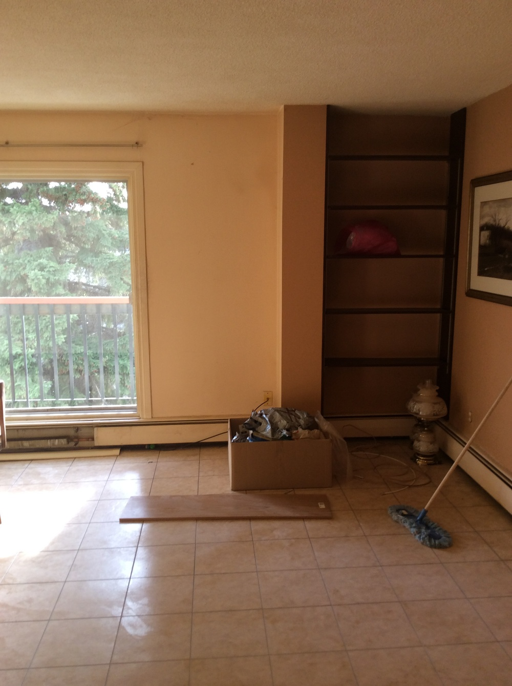 Inglewood+Condo+Livingroom+Storage+Before.JPG