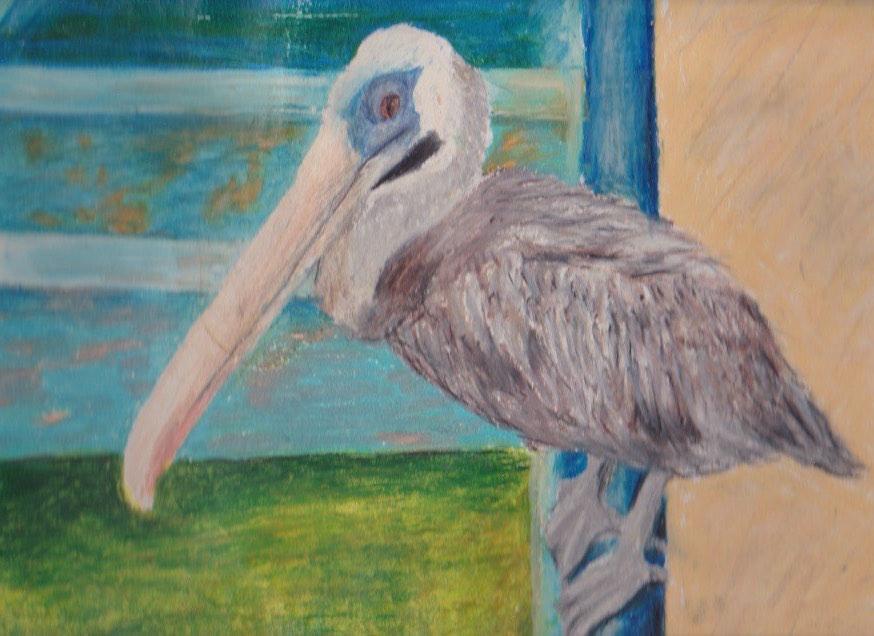 Pelican Oil Pastel