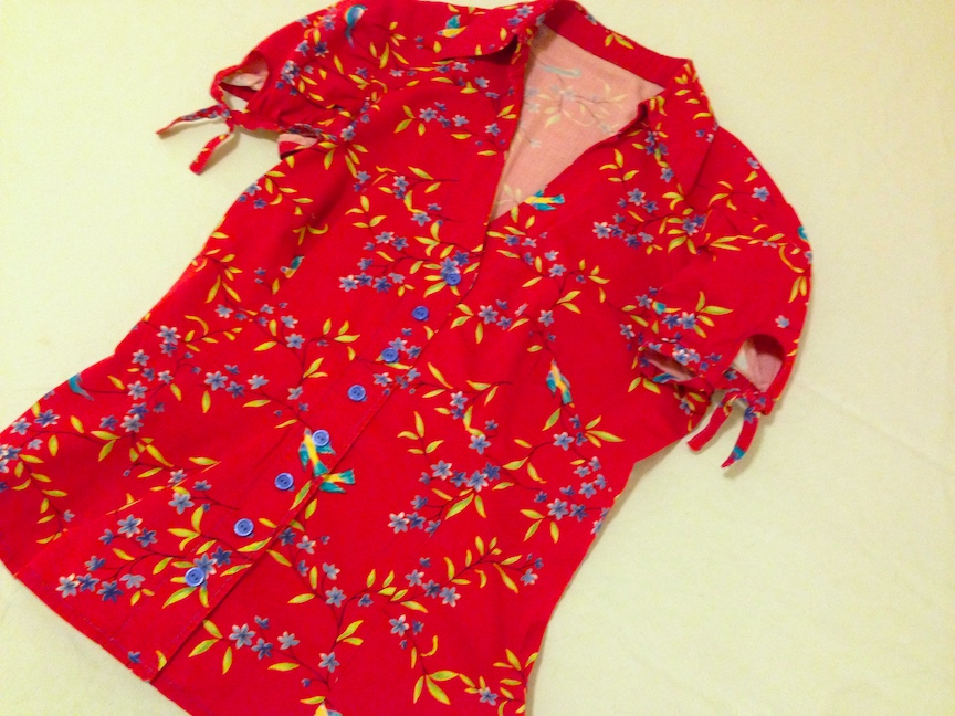 Red-bird-blouse.JPG