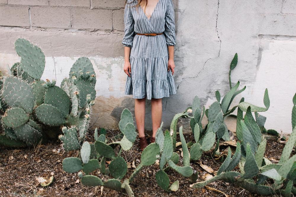 albuquerque portrait cactus