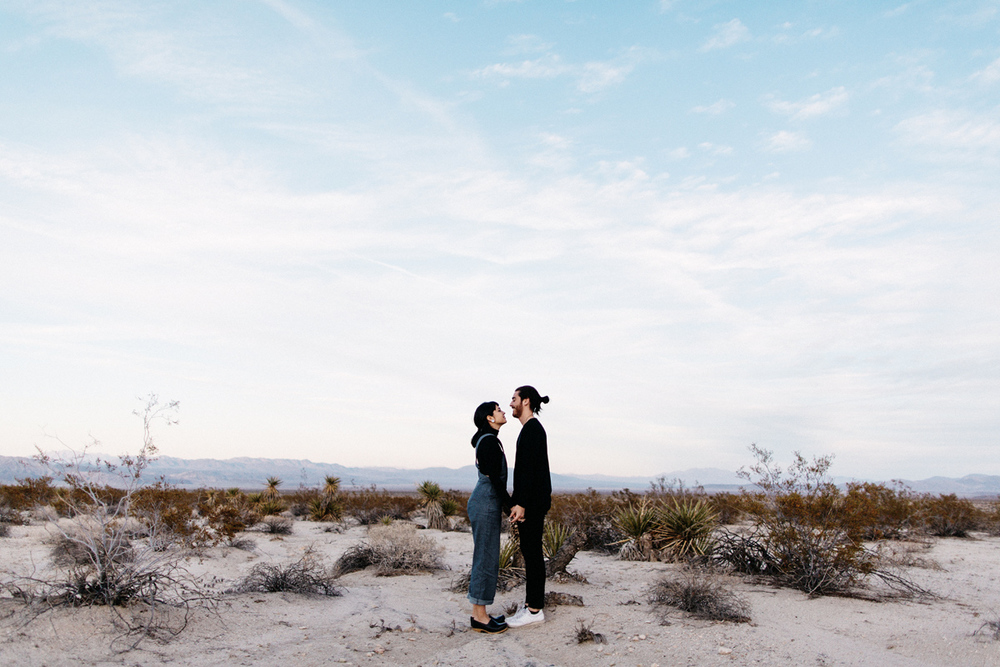 joshua tree photographer