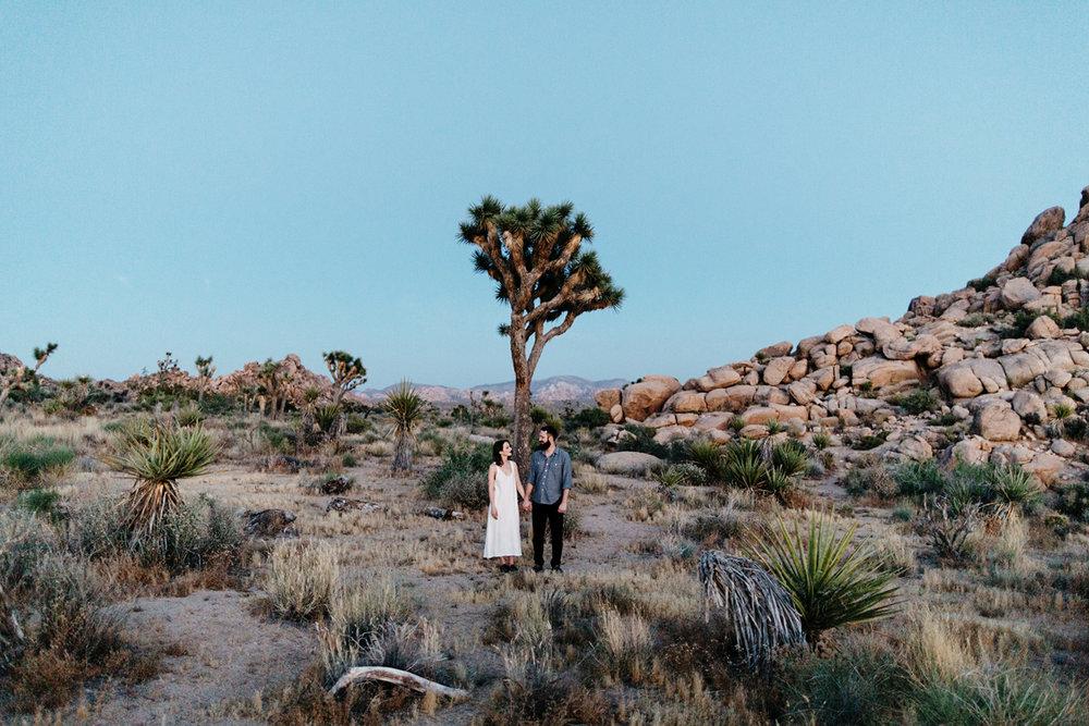 joshua tree, engagement photographer, california, joshua tree ph