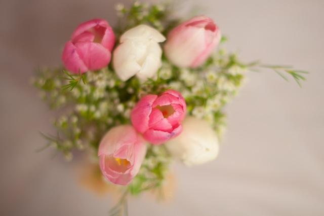 Evelisa Floral & Design: Tulips mason jars