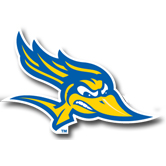 CSUB Foundation - Baseball