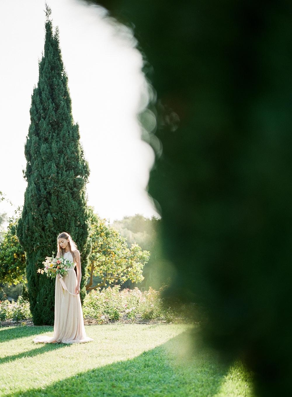 film and flora 15.jpg
