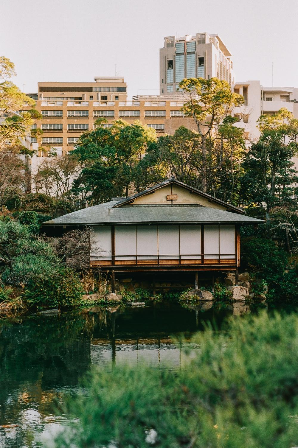 Sorakuen Garden Cocoro and Kazuya 3.jpg