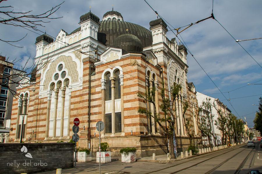 Eric-Bar-Mitzvah-Nelly-del-Arbo-Sofia-Bulgaria-2.jpg