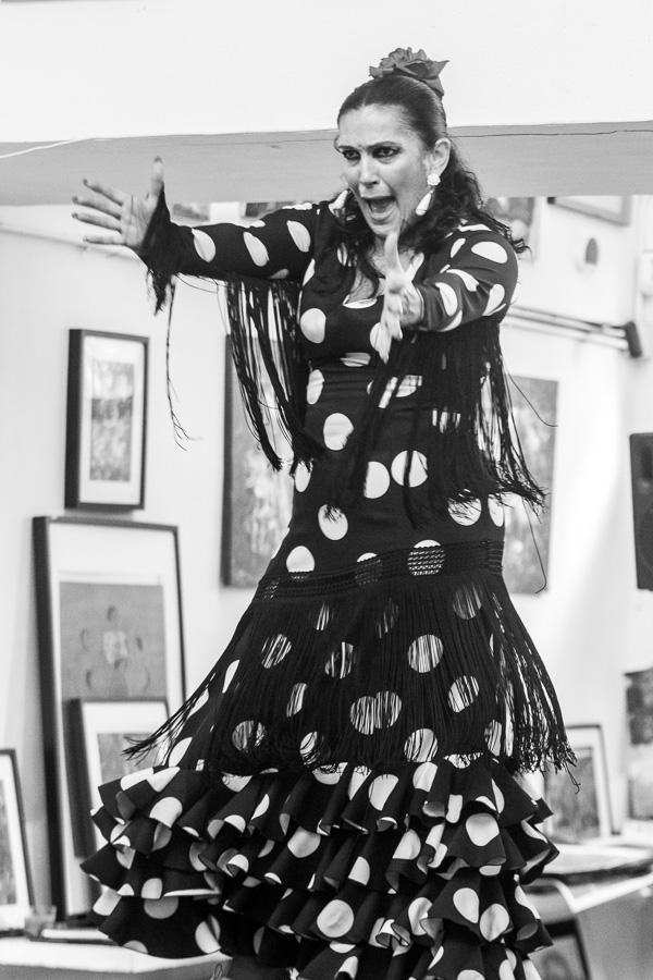 (c)Dansa-Flamenca-Artista-Carmen-Lara-Acuyo-22-Photographer-Nelly-del-Arbo.jpg