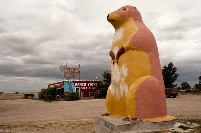 Six-Ton Prairie Dog  , Pigment Inkjet Print, 2012 (Chris Mortenson)