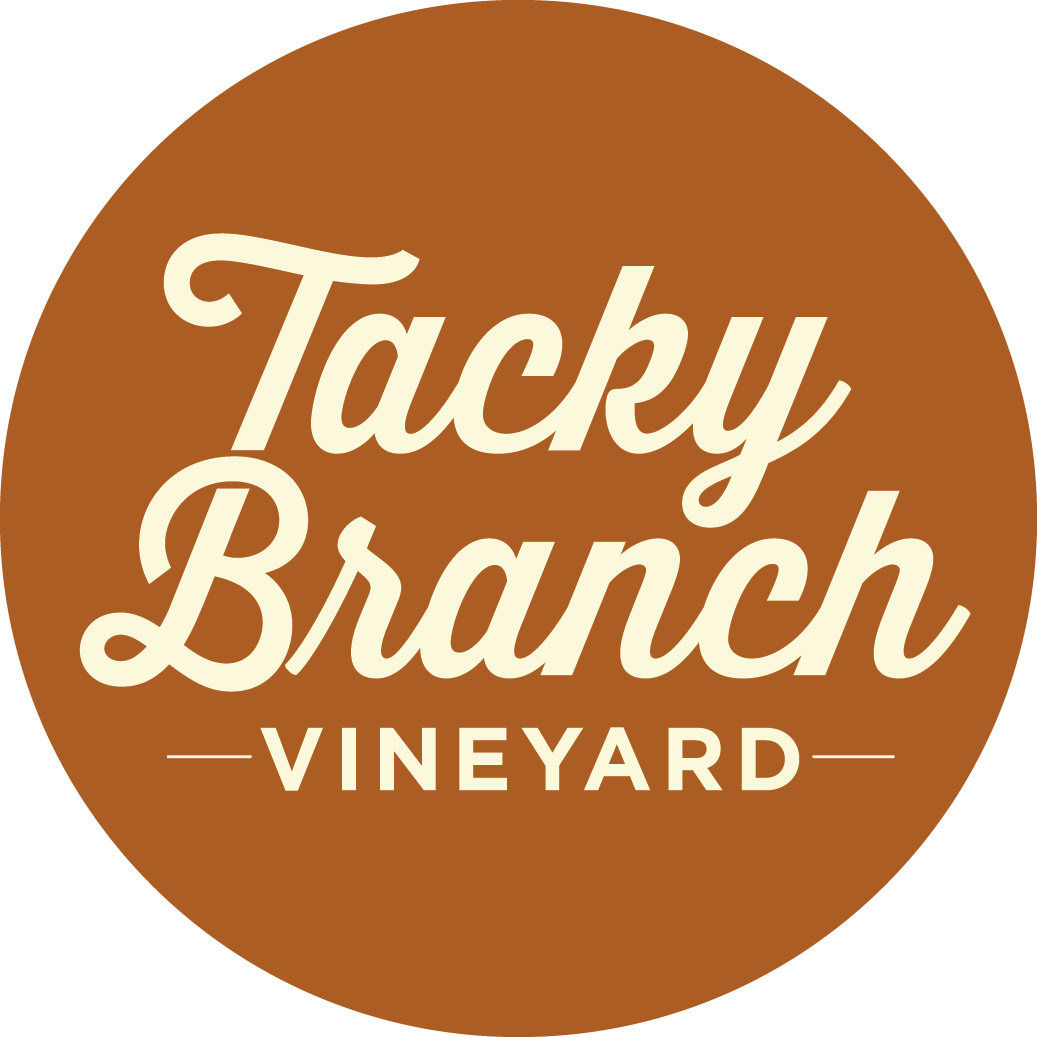 TACKY BRANCH VINEYARD