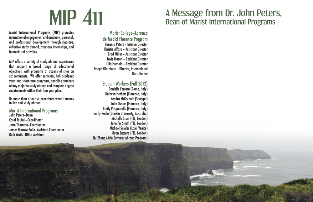 MIP411.jpg