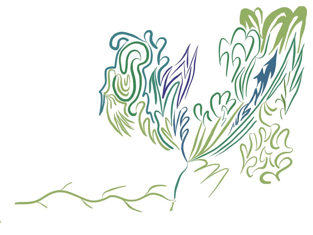 doodle - 1.jpg