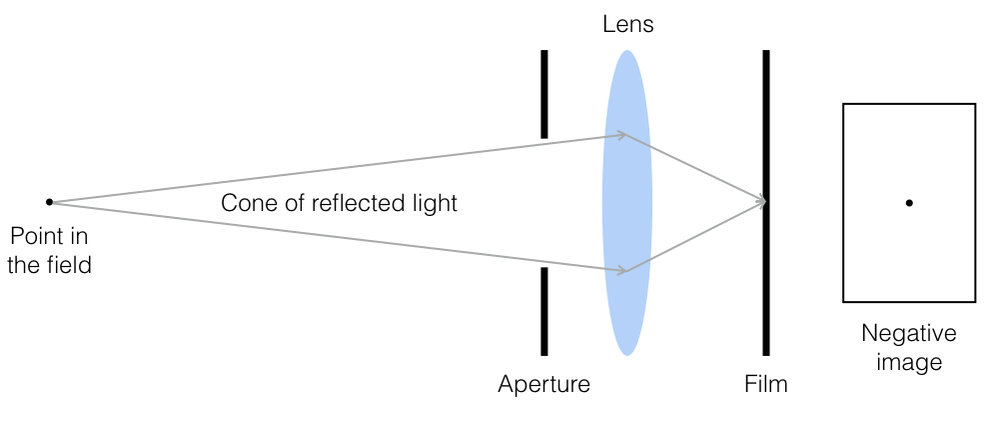 "Two-dimensional schematic showing ""perfect focus."" Rays of light emanating from a point source in the field are brought once again to a point on the film plane."