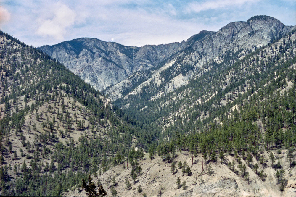 canyon - 1 (1).jpg