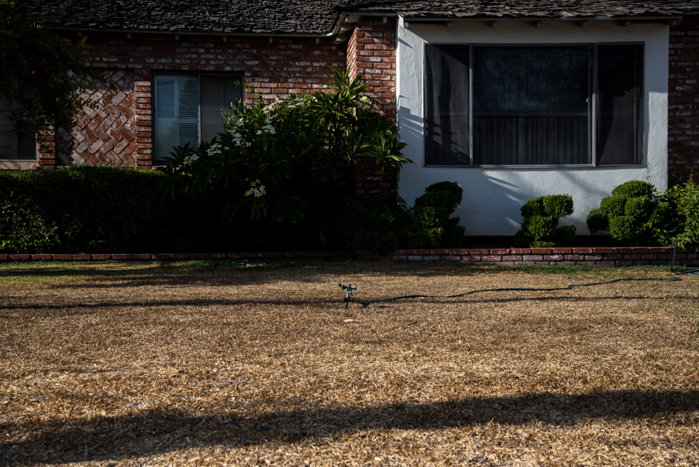 suburbia-3156.jpg