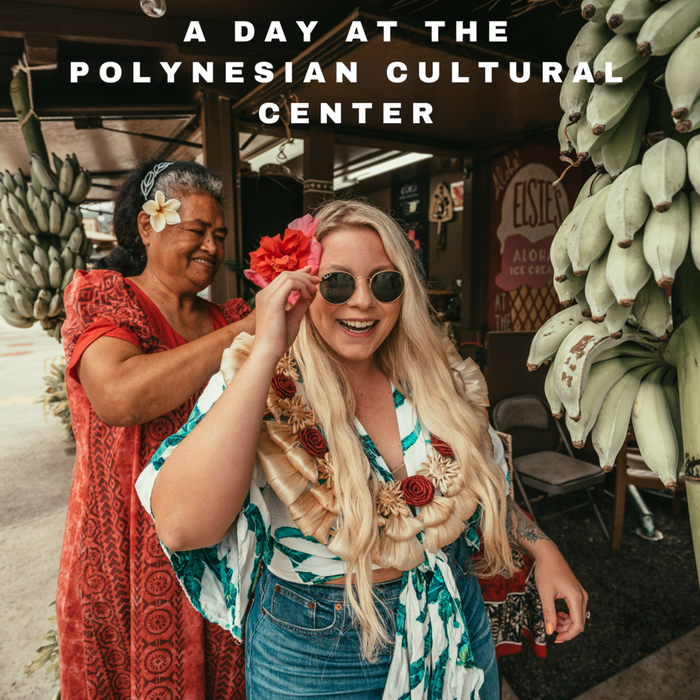 POLY BLOG COVER.png