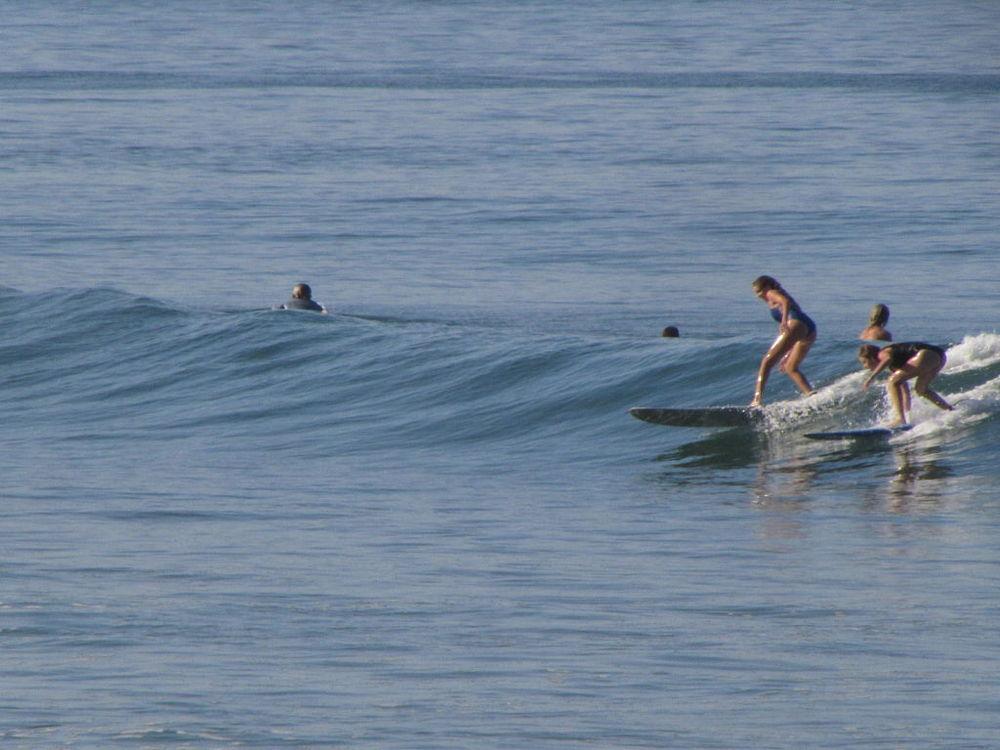 del sol surf.png
