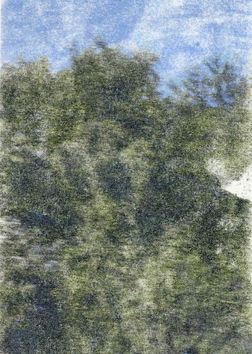 81004.jpg