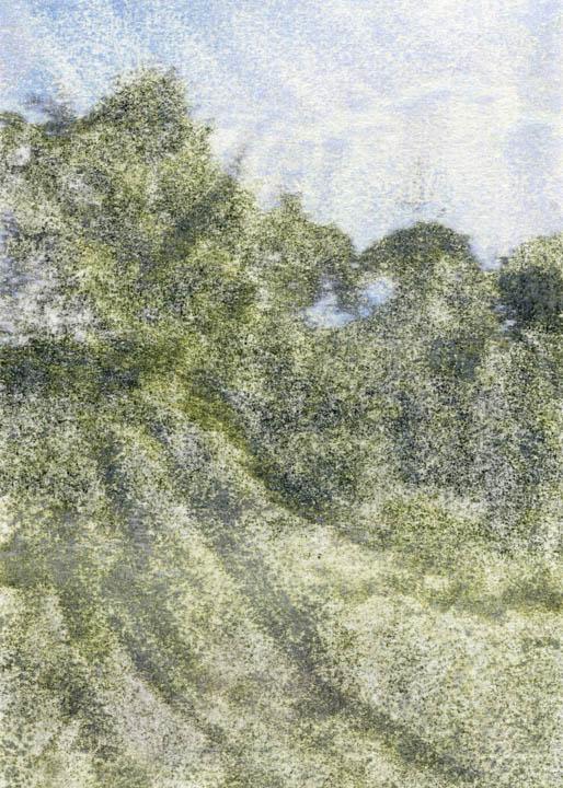 81015.jpg