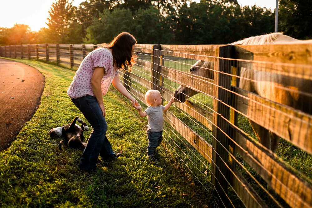 Mom and son feeing horse | By G. Lin Photography | Durham Family Photographer