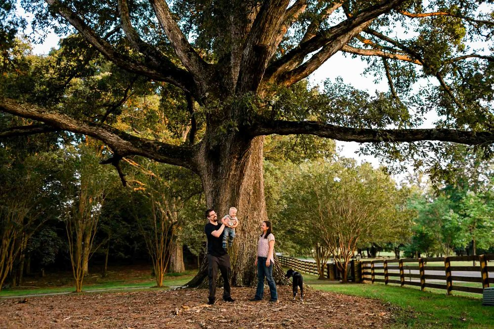 Family portrait by oak tree | By G. Lin Photography | Durham Family Photographer