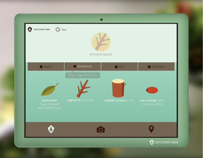Loop helps children identify the different parts of a tree