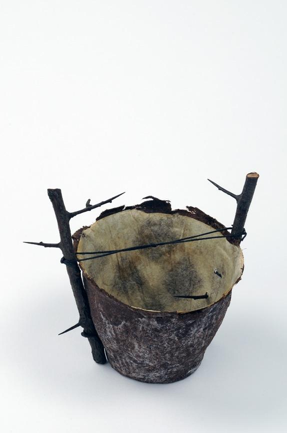 sdoyal.blackthorn.JPG