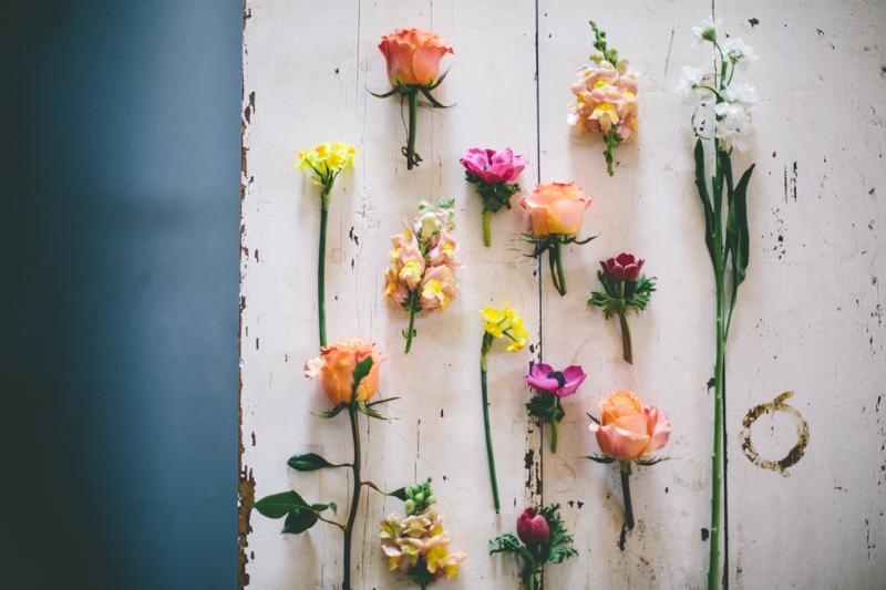 pretty_flowers-7802
