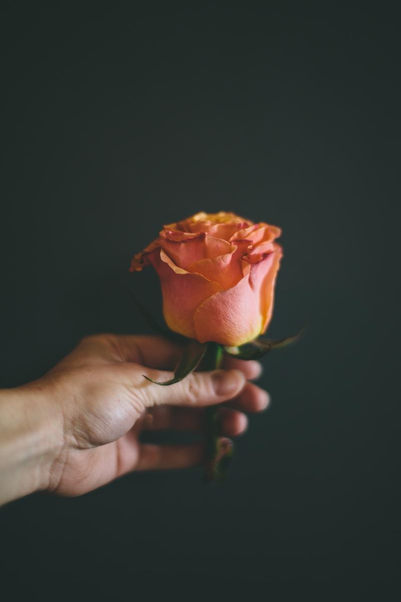 pretty_flowers-7807