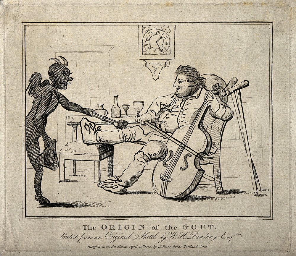 A_gouty_man_drinking_wine_and_playing_the_cello;_the_pain_is_Wellcome_V0010849.jpg