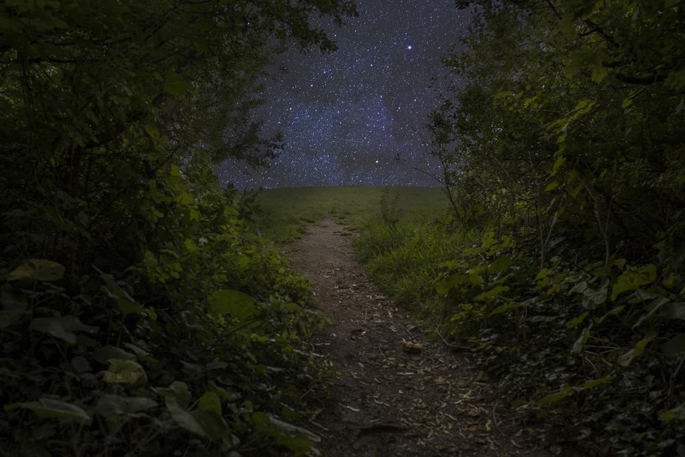 'A Path'